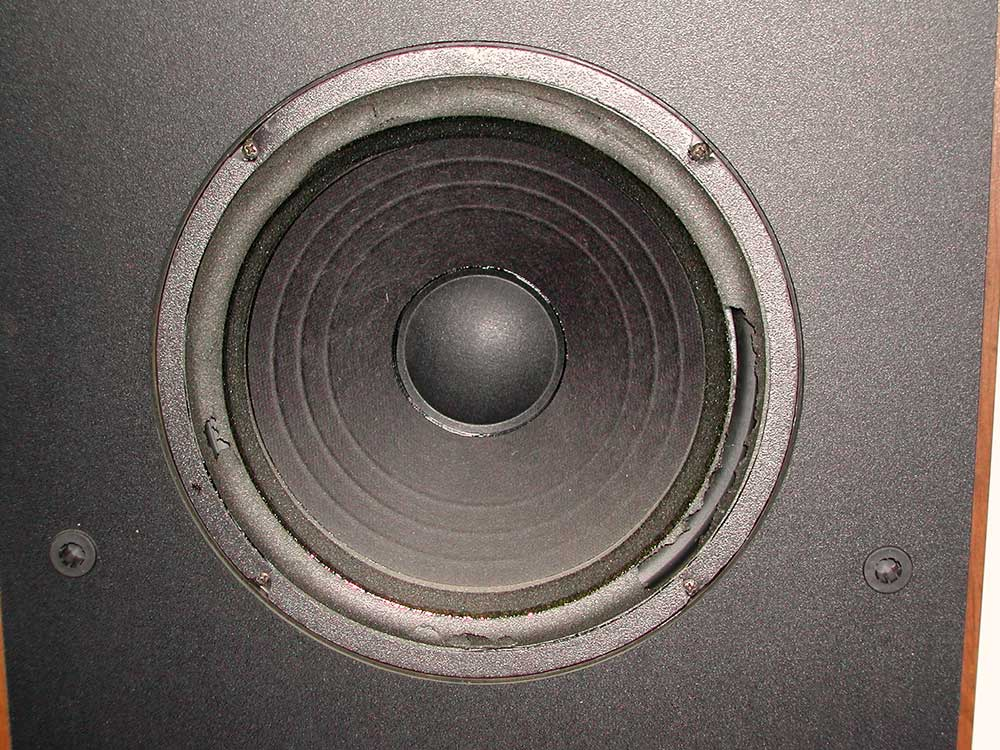 Image of a perished speaker surround.